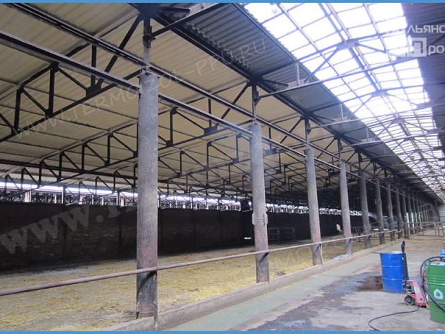 Теплоизоляция животноводческих ферм и строений